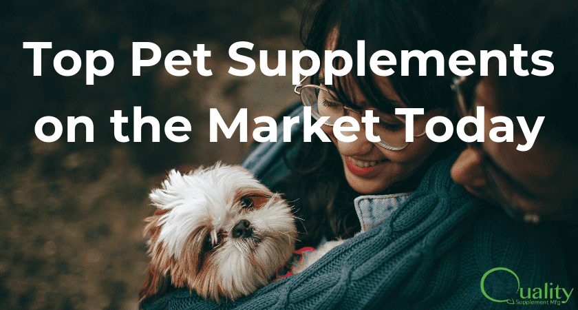 Top Pet Supplements on the Market Today