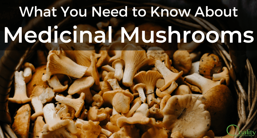 Trend: What You Need to Know About Medicinal Mushroom Supplements